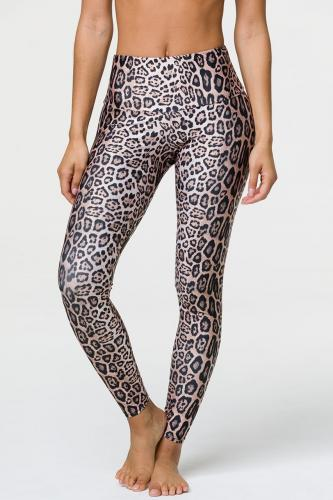 ONZIE - High Rise Legging Leopard